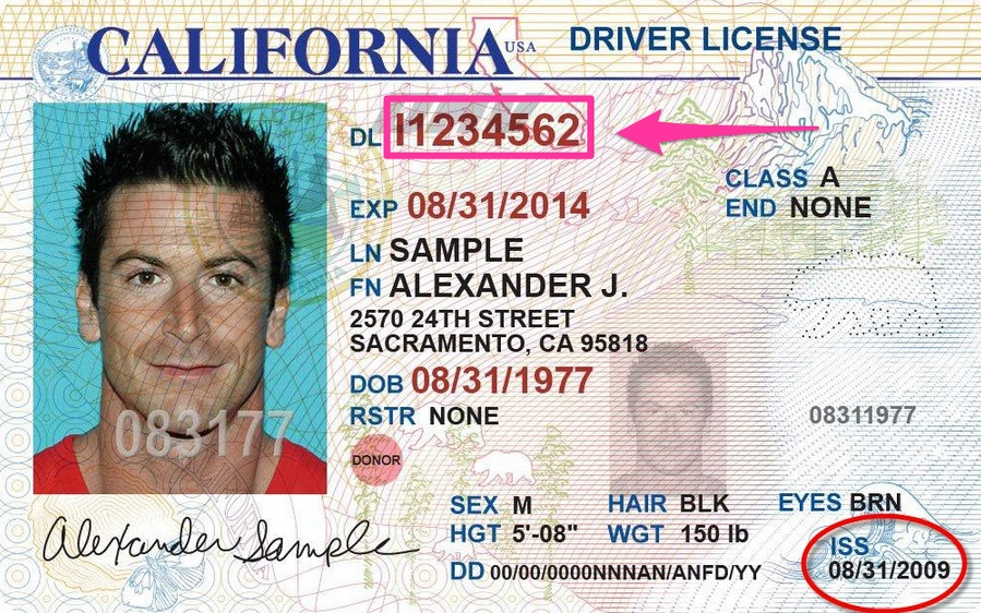 Example driver license photo