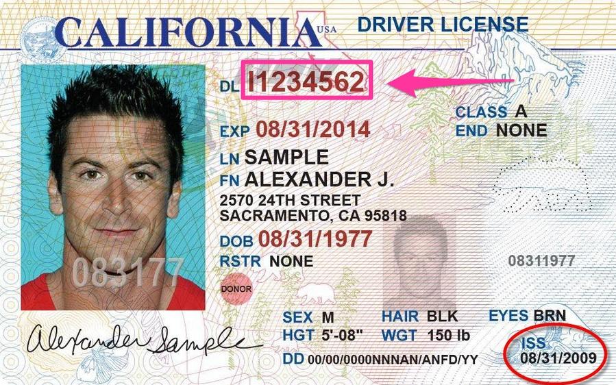 Ejemplo de foto de la licencia de conducir