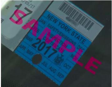 NY sample